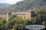 *** Affaire *** Château du 17ème siècle à rénover (prévoir gros budget), 1600m² espace au sol