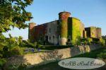 Château médiéval hors pair, XIIe siècle, 64ha avec parc à la française, vignoble à créer, prairies