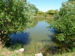 Pêche étang privé - stocké et prêt à pêcher !