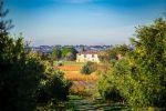 Domaine viticole avec vignes biologique, villa de 650 m², maison à rénover et cave moderne.