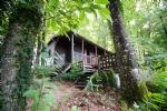 5 hectares de forêt de châtaigniers, 2 lacs alimentés par des sources et chalet en bois