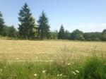 Terrain de 2.7Ha dans le Périgord Vert - constructible et zones naturelles