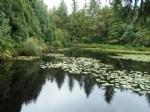 Terrain de 8879m² avec bel étang de 4500m²