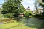Terrain constructible avec petit étang