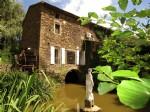 Moulin 15 mns d'ALBI