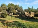 Terrain de loisir non constructible de 12810 m² avec vues et chalet.