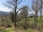Nord Aveyron - Terrain constructible