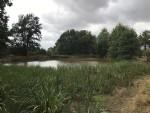 Terrain rural de 1.3 hectares avec lac.