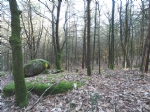 Forêt/bois sur 5.76 hectares