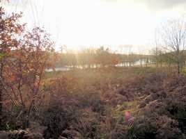 Terrain à bâtir avec vue sur la rivière Vienne